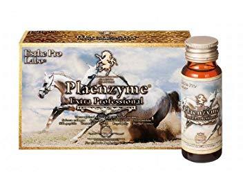 Plaenzyme